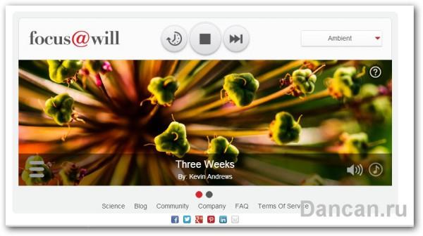 focus-will-interface