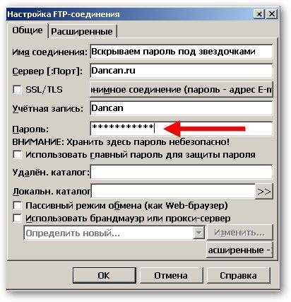 hide-password-in-programm